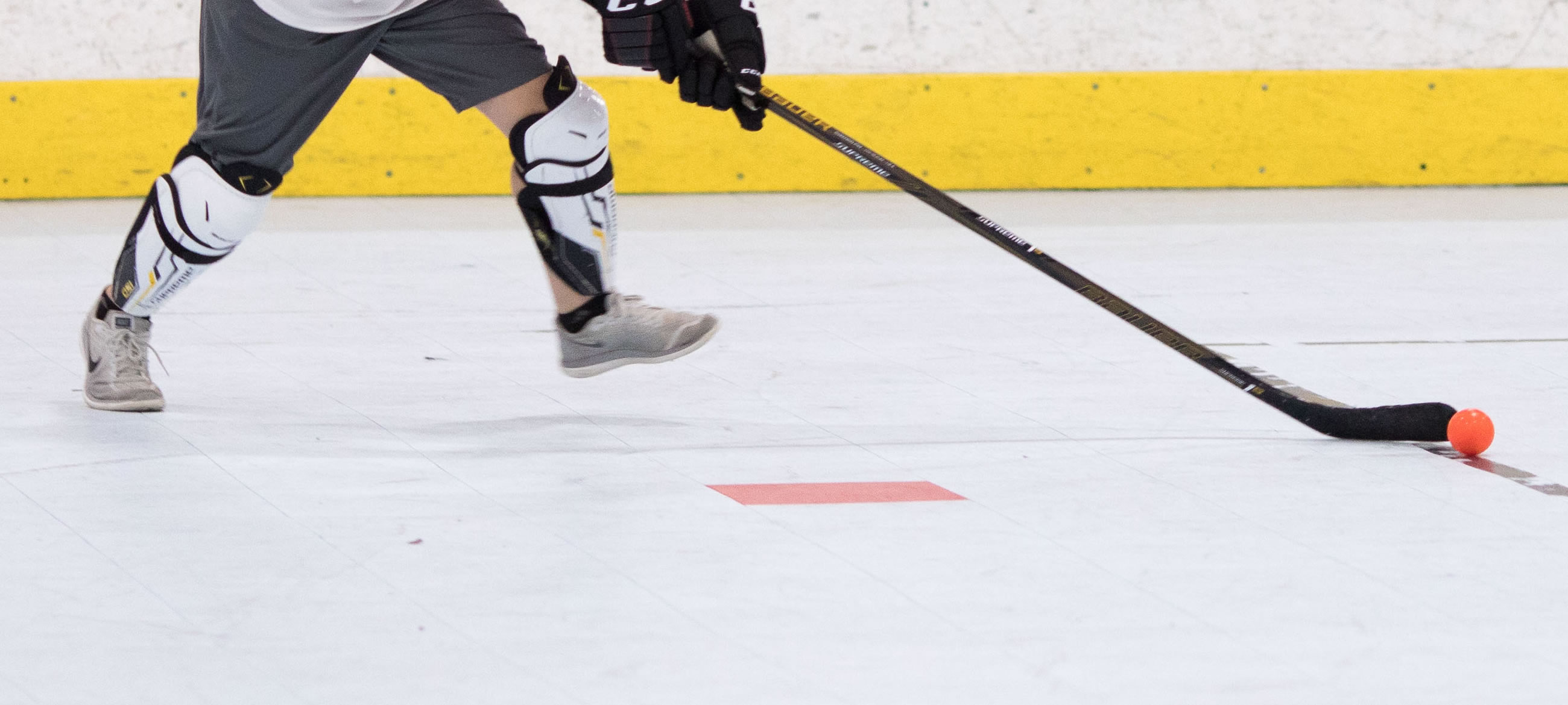 Long Island Youth Dek Hockey Jamboree